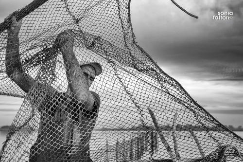 SONIA FATTORI - Io, il pescatore, la laguna 02