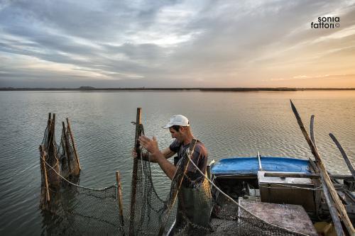 SONIA FATTORI - Io, il pescatore, la laguna 04