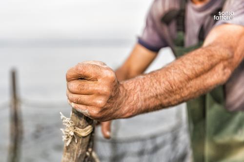 SONIA FATTORI - Io, il pescatore, la laguna 06