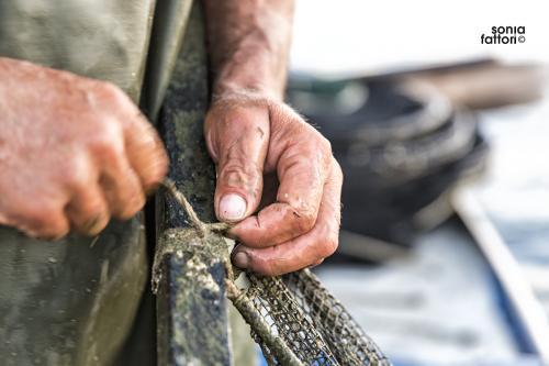 SONIA FATTORI - Io, il pescatore, la laguna 07