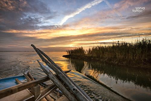 SONIA FATTORI - Io, il pescatore, la laguna 15