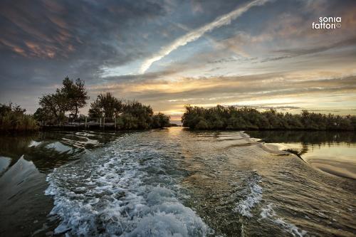 SONIA FATTORI - Io, il pescatore, la laguna 16