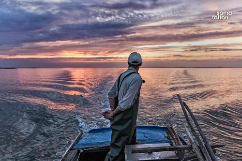 SONIA FATTORI - Io, il pescatore, la laguna 17